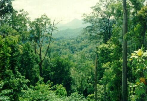 Hubungan Letak Astronomis Indonesia dengan Biodiversitas