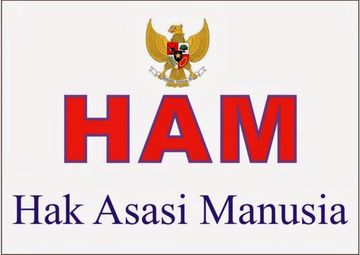 Upaya Pemerintah dalam Menegakkan HAM di Indonesia